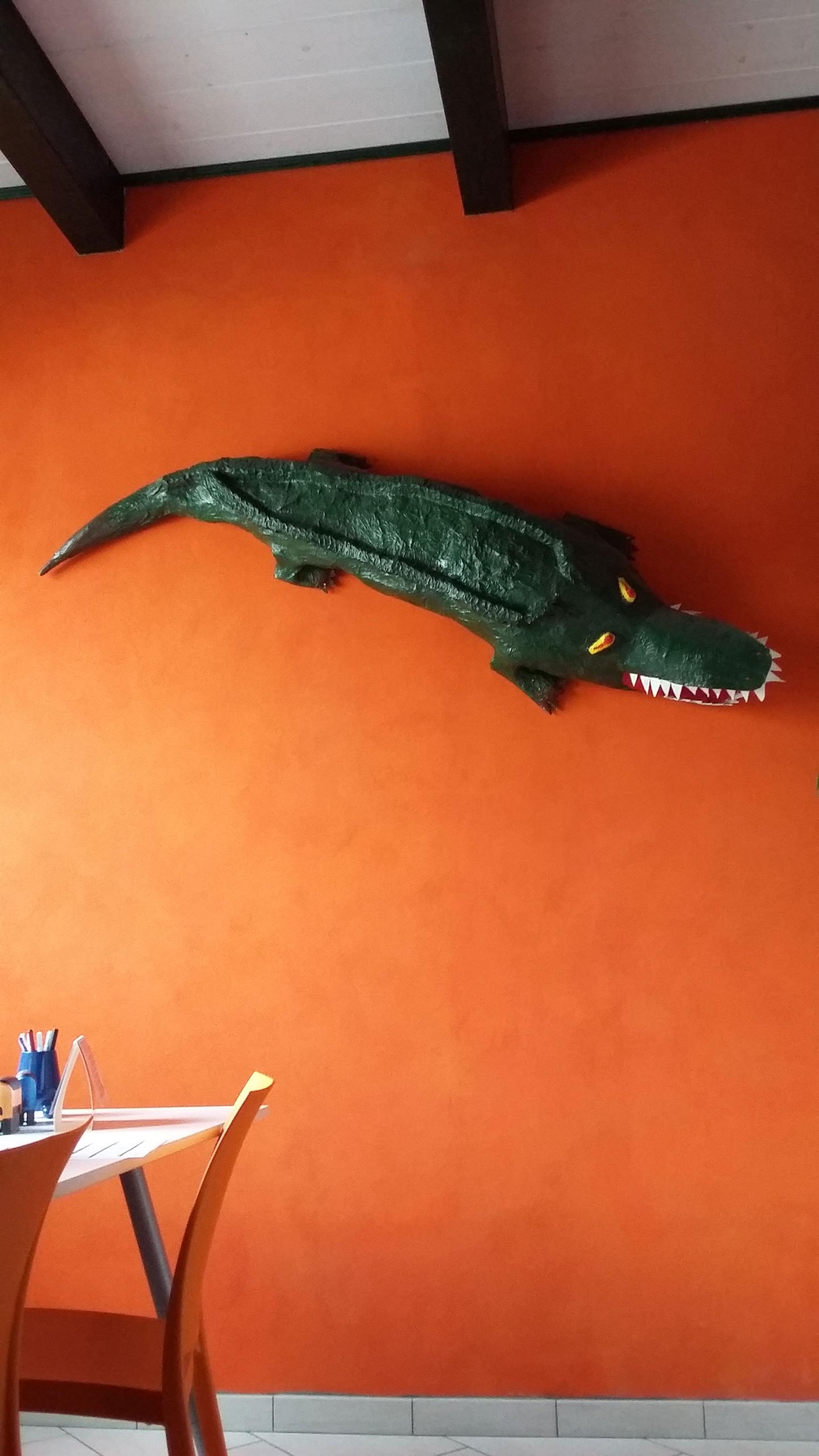 vista di un coccodrillo appeso al muro