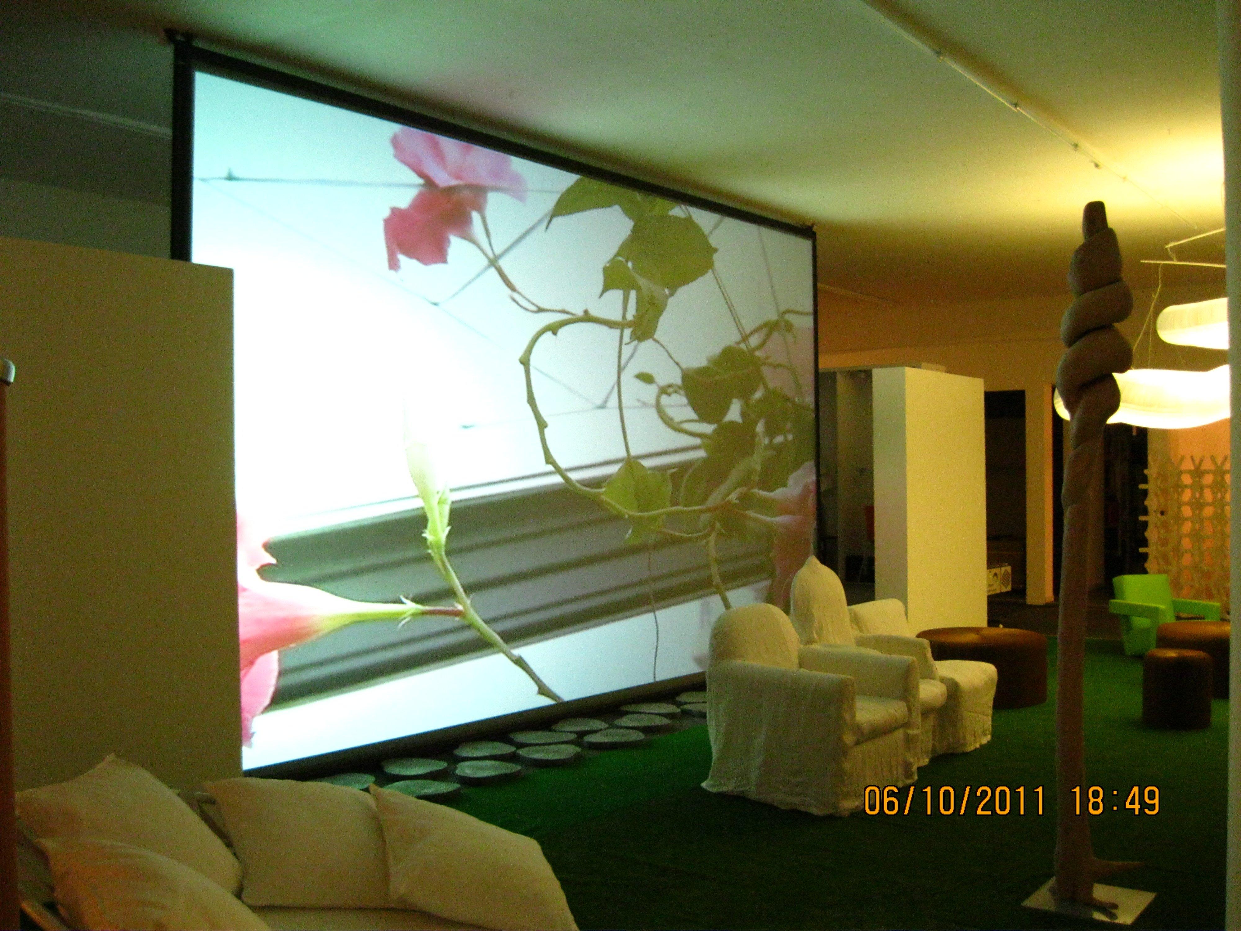 proiettore con immagini di fiori