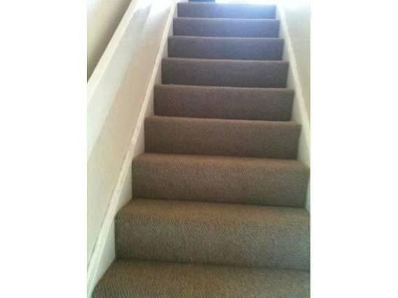 Neat carpet