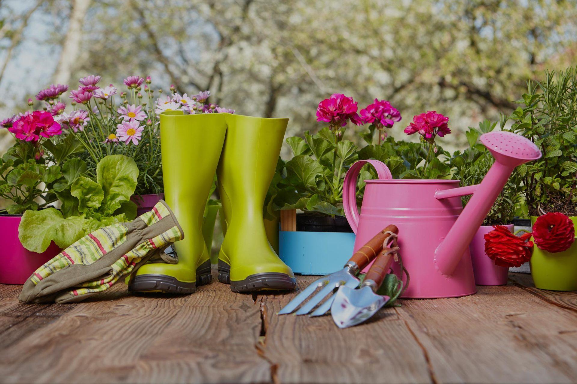 attrezzi da giardinaggio all'aperto sul vecchio tavolo di legno