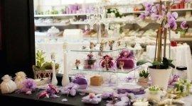 nastrini, tulle, scatole, fiorellini