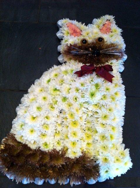 cat shape flowers