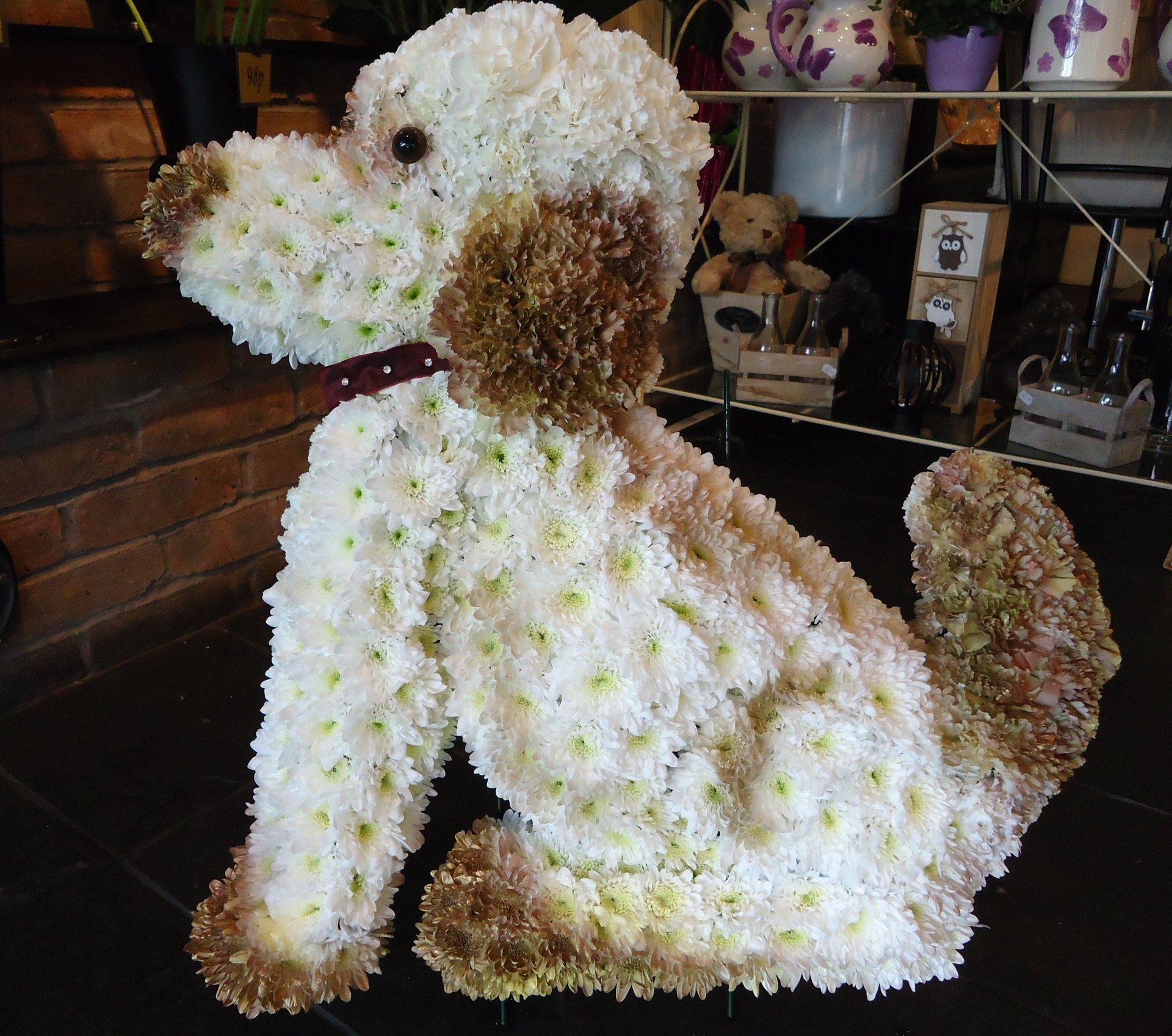 dog shape flowers