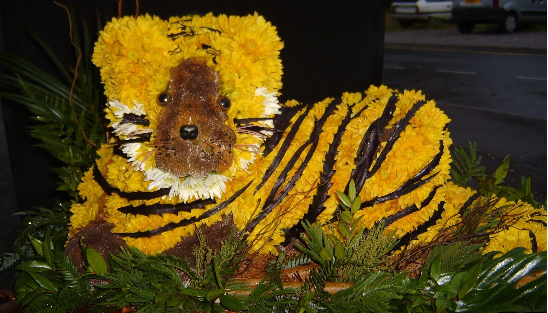 tiger shaped flowers