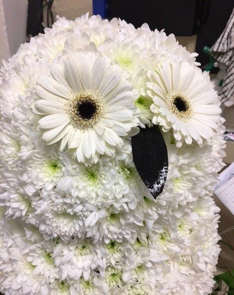 flowers arranged in owl shape