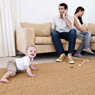 Carpet Cleaning, Pest Control and Whole-Home Cleaning Solutions