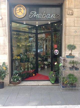Ikebana - Il negozio