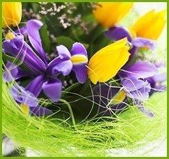 confezioni floreali