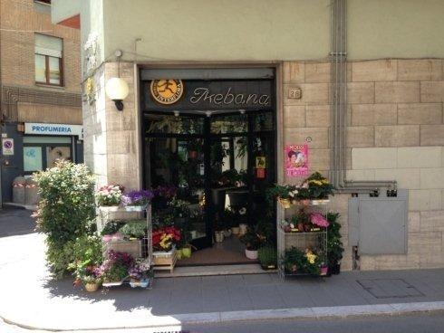 Il nostro negozio a Foligno