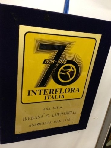 Associati Interflora dal 1972
