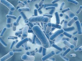 Disinfezioni e sanificazioni