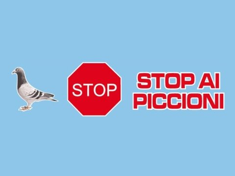 Stop ai piccioni