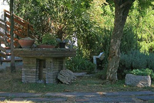 vista di un angolo del giardino con sentiero in pietra delle piante messe sopra delle rocce e dietro delle palme e altri alberi