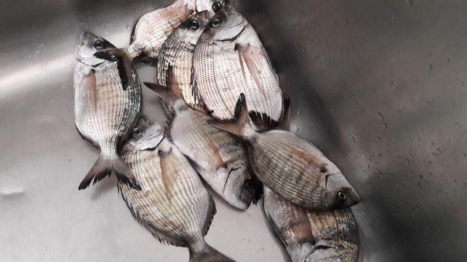 cucina ar marinaro 37