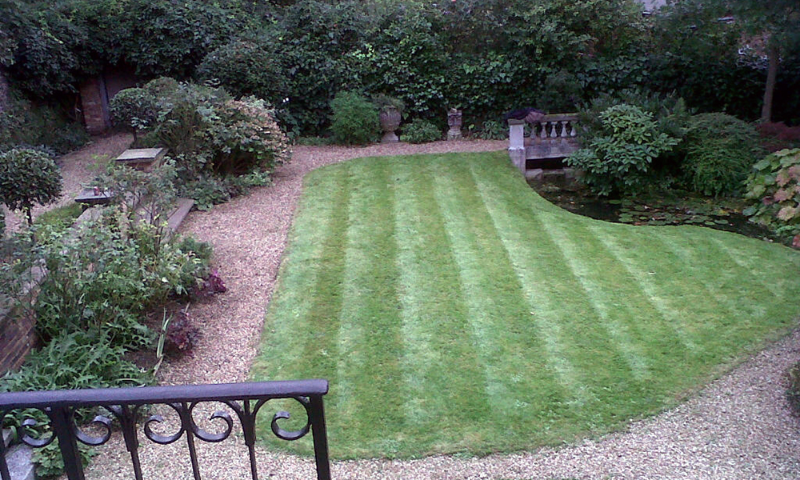 Garden maintenance experts in South Kensington