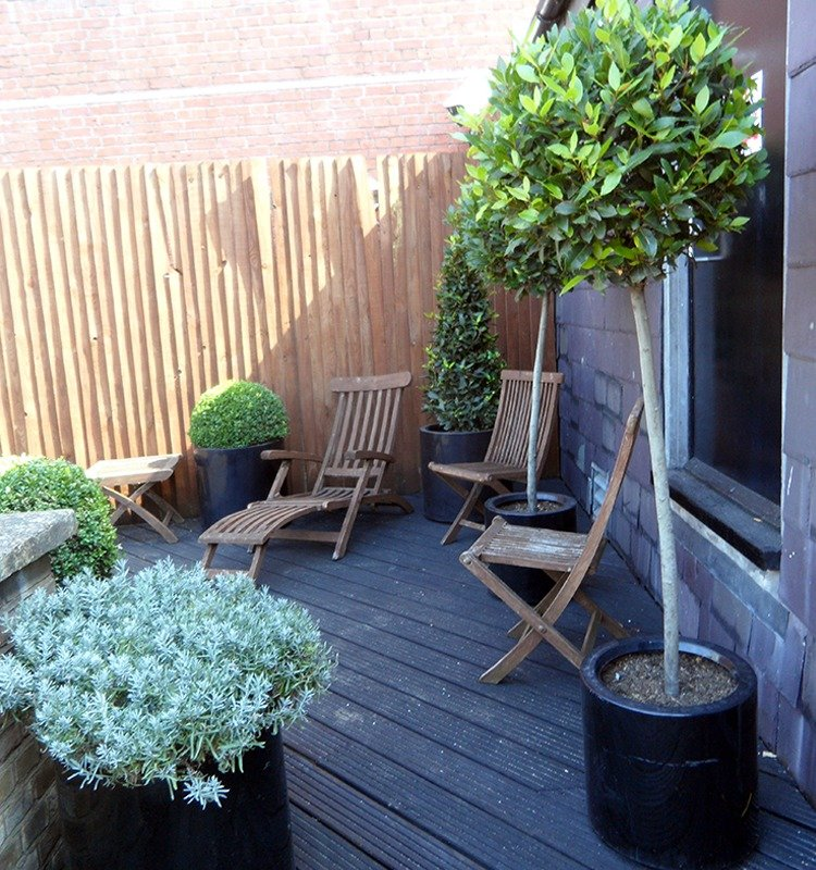 Garden upkeep in West London