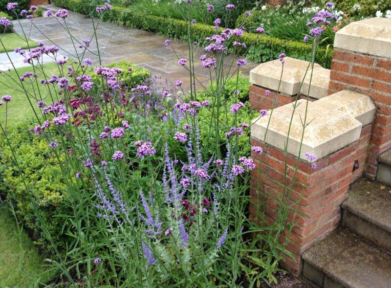 Stunning garden design in North London