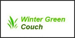 winter green couch