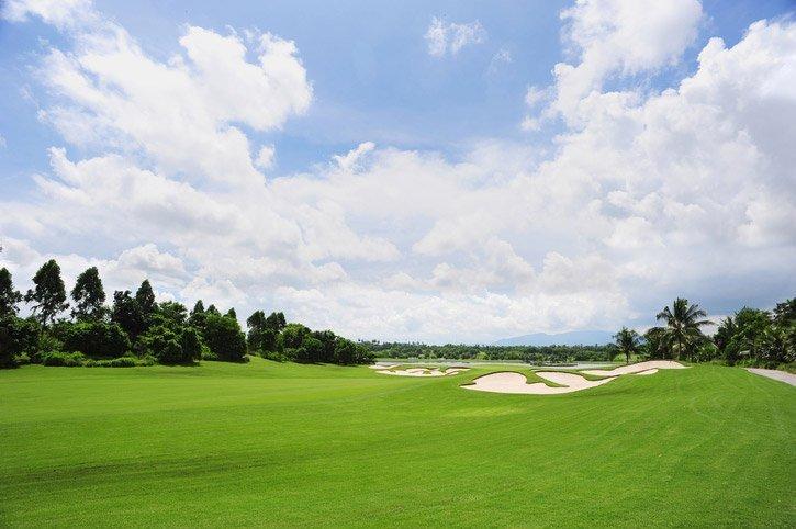 golf course lawn