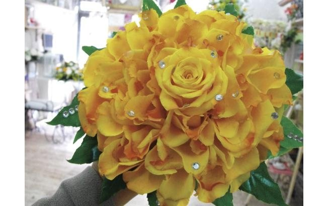 rosamelia
