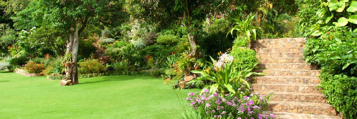 modern-garden
