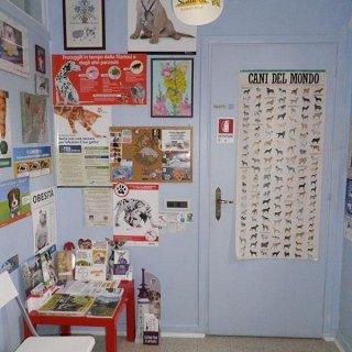 ambulatorio veterinario
