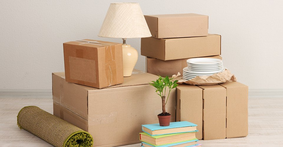 A pile of boxes with plates, a plant, books and a lamp
