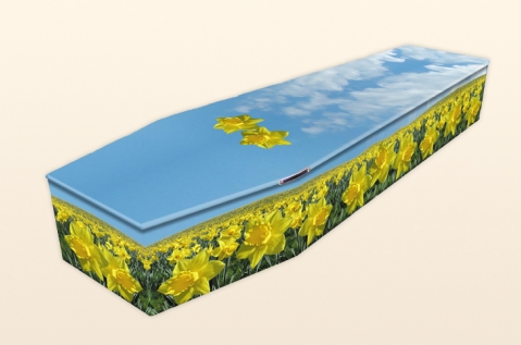 Blue and yellow coffin