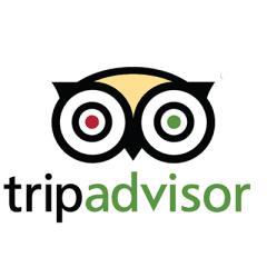 Pagina Tripadvisor
