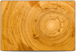 chopped seasoned log wood grain