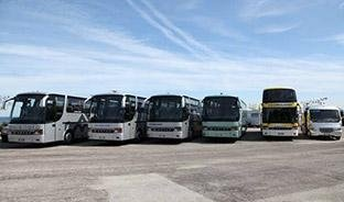 the-bus-fleet