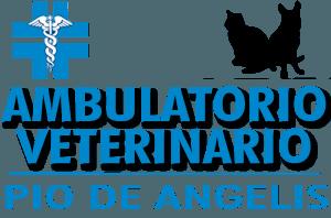 clinica veterinaria, ambulatorio veterinario, veterinario pio de angelis, pio de angelis Cerveteri, Roma