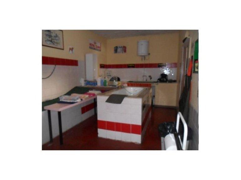 Pio de Angelis, Clinica Veterinaria, Ospedale Veterinario, Cerveteri, Civitavecchia, Roma