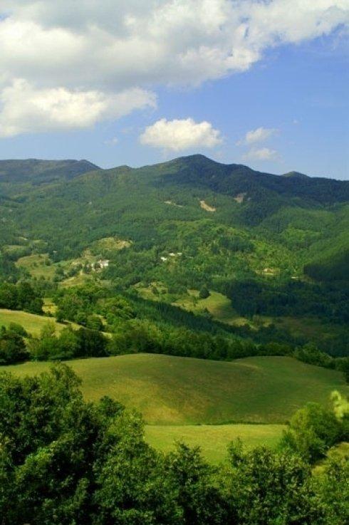 vista panoramica Casentino