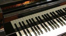 Bottega del Pianoforte, Melzo (MI), sostituzione martelletti