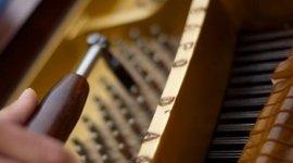 Bottega del Pianoforte, Melzo (MI), strumenti musicali