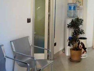studio centro veterinario