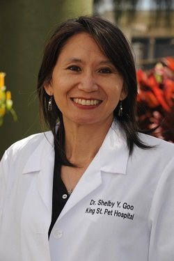 About Dr. Shelby Goo