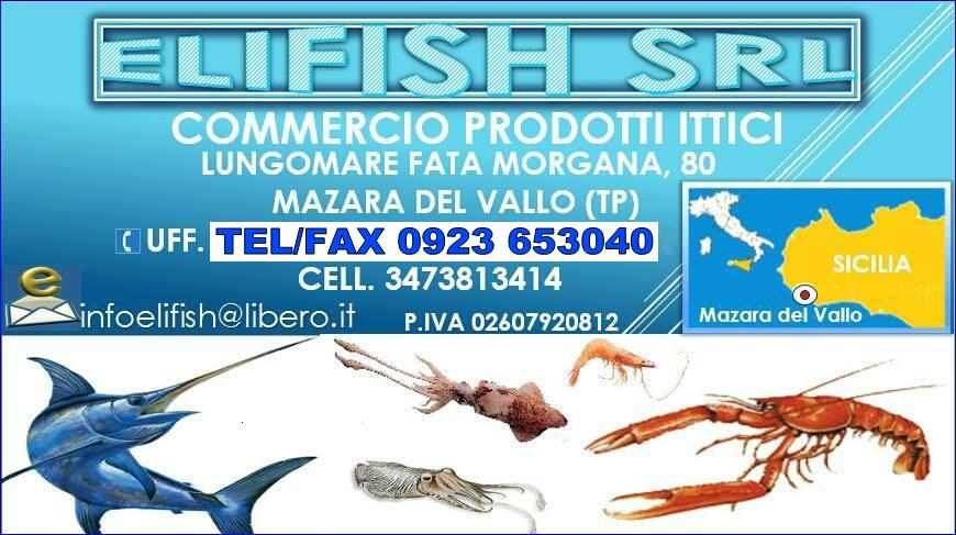 ELIFISH srl COMMERCIO PRODOTTI ITTICI - LOGO