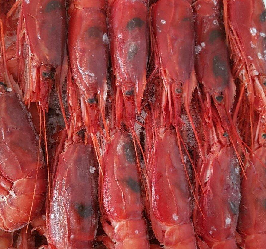 Gamberoni rossi a mazara del vallo