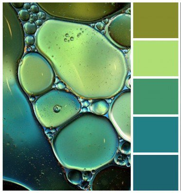 bolle d'acqua varie sfumature sul verde