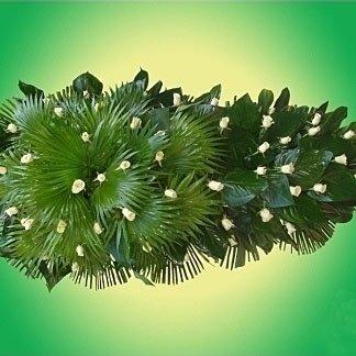 una composizione di foglie verdi