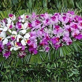 una composizione di foglie verdi e fiori viola