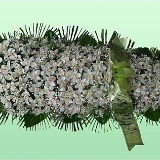 una composizione con dei fiori bianchi