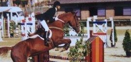 passeggiate a cavallo, preparazione agonistica, lezioni di equitazione