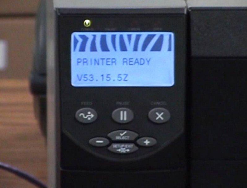 zebra pause test display