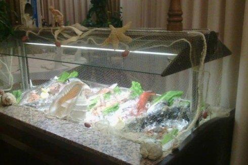 il banco frigo con il pesce fresco