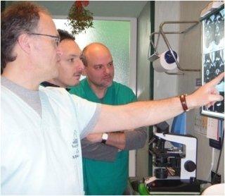 ecocardiografia veterinaria