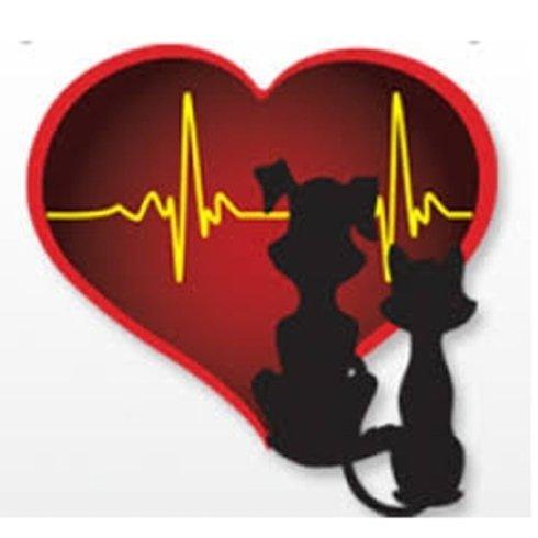 Medici cardiologi veterinari