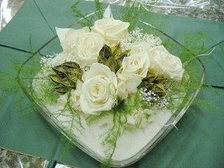 rose fiori stabilizzati